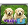 Personalised Deluxe Puppy Dog (Labrador) Pencil Case fully loaded with contents