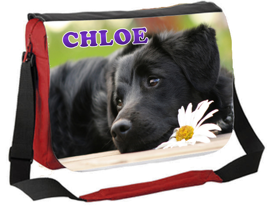 large personalised messenger bag